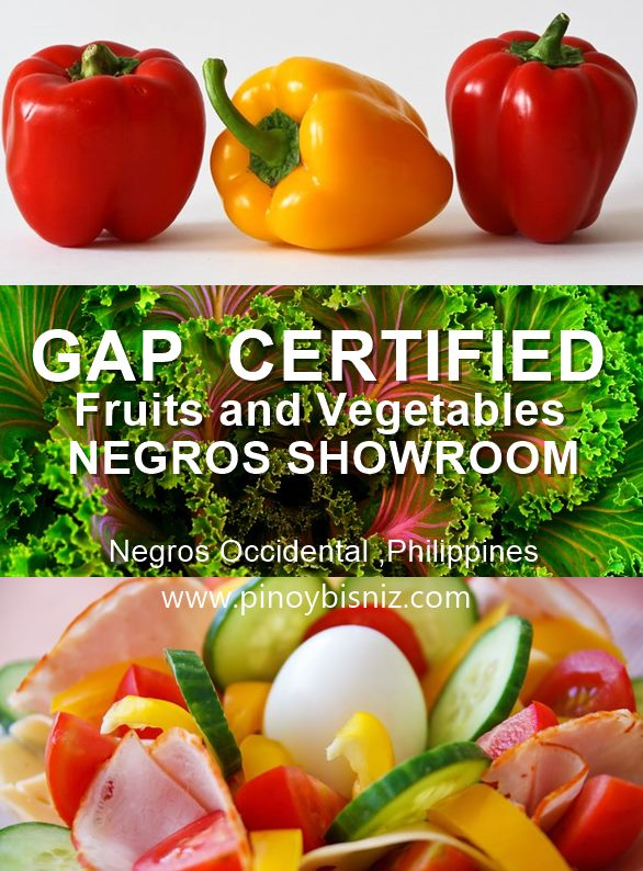 GAP CERTIFIED FRUITS AND VEGETABLES AT THE NEGROS SHOWROOM