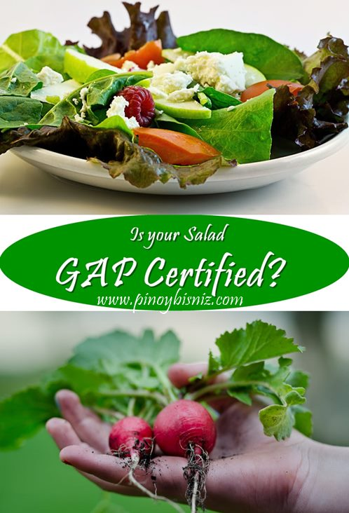 IS YOUR SALAD GAP CERTIFIED?