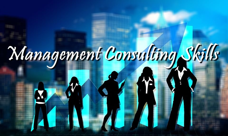 MANAGEMENT CONSULTING SKILLS